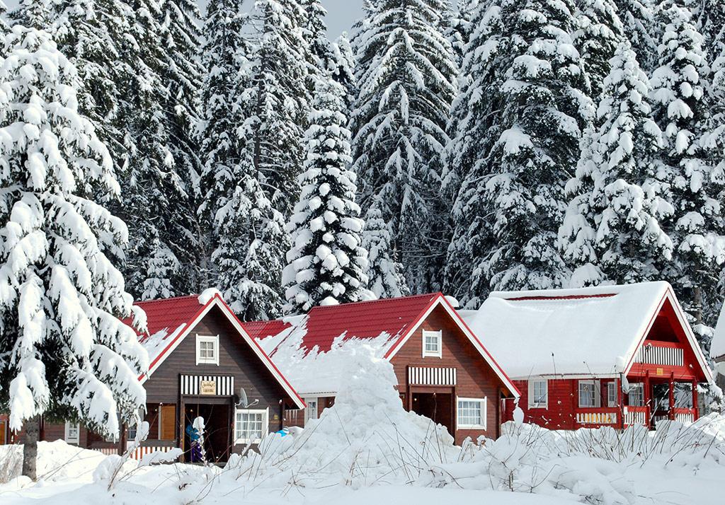 Ski Chalets, Borovets