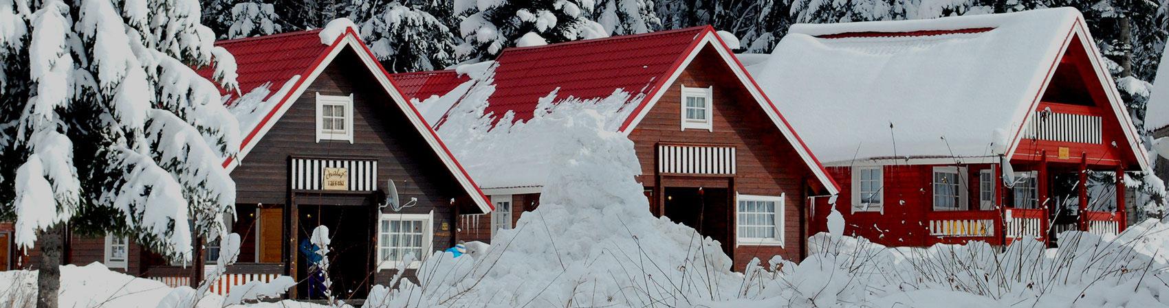Borovets Ski chalets